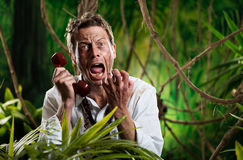 Furious businessman on the phone lost in jungle Stock Images