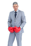 Furious businessman posing with boxing gloves Stock Photography