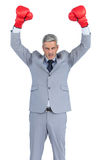 Furious businessman posing with red boxing gloves Royalty Free Stock Photography