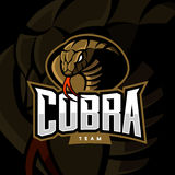 Furious cobra sport vector logo concept  on dark background. Stock Images