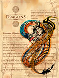 Furious Dragon drawing on old vintage book page vector illustration