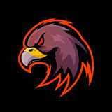 Furious eagle sport vector logo concept isolated on black background Royalty Free Stock Photo
