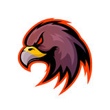 Furious eagle sport vector logo concept isolated on white background. Stock Images