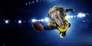 Furious elephants team . Mixed media Royalty Free Stock Photography