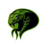 Furious green snake sport vector logo concept isolated on white background. Royalty Free Stock Image