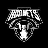 Furious hornet head athletic club vector logo concept isolated on black background. 