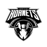 Furious hornet head athletic club vector logo concept isolated on white background. Modern sport team mascot badge design. Premium quality wild insect emblem t vector illustration