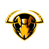 Furious hornet head athletic club vector logo concept isolated on white background. Royalty Free Stock Image
