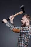 Furious lumberjack. Royalty Free Stock Photo