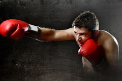 Furious man training boxing on gym with red fighting gloves throwing vicious punch Stock Image