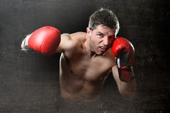 Furious man training boxing on gym with red fighting gloves throwing vicious punch Stock Photos