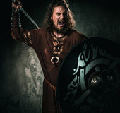 Furious viking with sword in a traditional warrior clothes. Serious viking with sword in a traditional warrior clothes Royalty Free Stock Photos