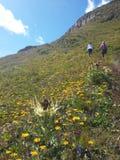 Furkapass, Alpes suisses Photos libres de droits