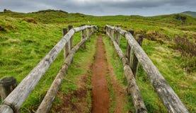 Furnas De Enxofre ślad, Terceira, Azores, Portugalia Zdjęcia Stock