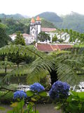 Furnas, Sao Miguel Stock Photos