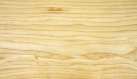Furnier-Blatt maole Stockbild
