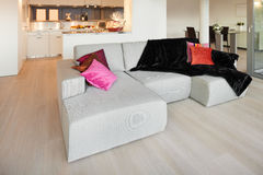 Furnished apartment, living room view Stock Photo