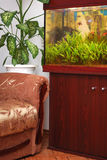 Furniture and aquarium Royalty Free Stock Photography