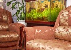 Furniture and aquarium Stock Image