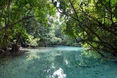 Furo azul no paraíso, Vanuatu fotografia de stock royalty free