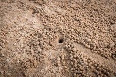 Furo da areia na praia Fotografia de Stock