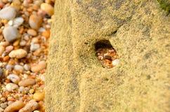 furo de pedra Foto de Stock