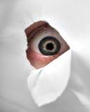 Furo do espião foto de stock