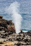 Furo do sopro em Maui Fotos de Stock Royalty Free