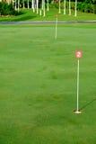 Furo do verde de colocação da prática do golfe Fotos de Stock