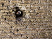 Furo na parede em Pompeii Itália Fotografia de Stock