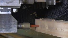 Furo no CNC da madeira da máquina de trituração para a produção industrial da mobília filme