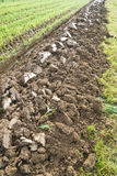 Furrow Stock Photo