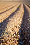 Furrow Closeup Stock Photos
