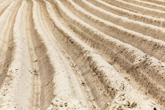 Furrow on the field Royalty Free Stock Images