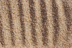 Furrows στη χονδροειδή άμμο. στοκ εικόνα