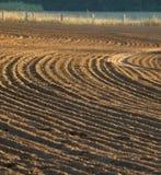 Furrows в поле Стоковое Фото
