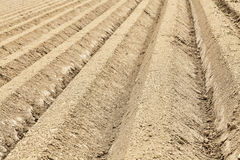 Furrows Abstract Stock Photos