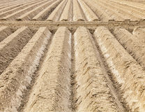 Furrows Abstract Royalty Free Stock Photos