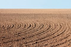 Furrows on autumn field Stock Photo