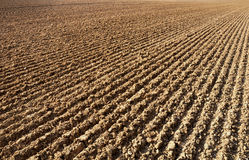Furrows in a field Royalty Free Stock Photos