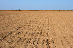 Furrows in the field Royalty Free Stock Images