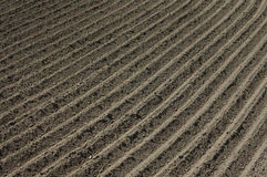 Furrows in the field 2 Stock Photos