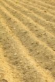 Furrows on the field Royalty Free Stock Images