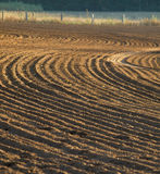 Furrows in a field. Furrows in a just ploughed field form an interesting pattern in the evening sun Stock Photo