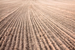 Furrows In A Field After Plowing It Royalty Free Stock Images
