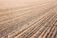 Furrows In A Field After Plowing It Royalty Free Stock Photography