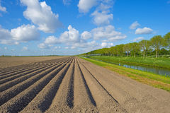Furrows in a field Royalty Free Stock Images