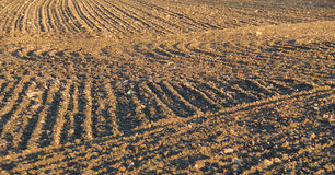 Furrows on the field Royalty Free Stock Image