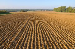 Furrows in land Stock Photo