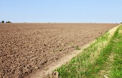 Furrows near the field edge Royalty Free Stock Image